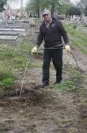 Faültetés a temetőnél