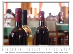 030 szőlő-, gyümölcs- és bortermeléshez kapcsolódó marketingtevéken 06