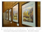 139 kiskunságtól-hargitáig festménykiállítás , művelődési központ 02