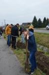 Ültess fát mozgalom